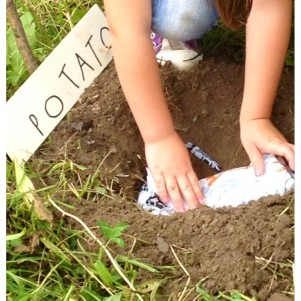 original-ninos-con-bomba-de-semillas (1)